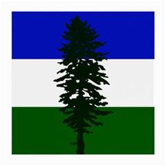 Flag 0f Cascadia Medium Glasses Cloth (2 Side) by abbeyz71