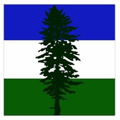 Flag 0f Cascadia Large Satin Scarf (square) by abbeyz71