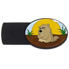 Groundhog Day Usb Flash Drive Oval (4 Gb) by Valentinaart