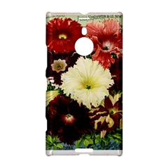 Flowers 1776585 1920 Nokia Lumia 1520 by vintage2030