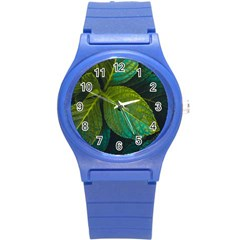 Green Plant Leaf Foliage Nature Round Plastic Sport Watch (s) by Nexatart