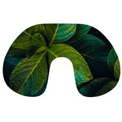 Green Plant Leaf Foliage Nature Travel Neck Pillows by Nexatart