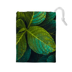 Green Plant Leaf Foliage Nature Drawstring Pouches (large)  by Nexatart