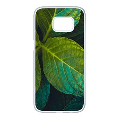 Green Plant Leaf Foliage Nature Samsung Galaxy S7 Edge White Seamless Case by Nexatart