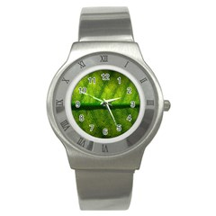 Leaf Nature Green The Leaves Stainless Steel Watch by Nexatart