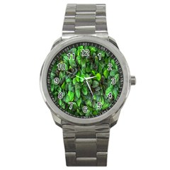 The Leaves Plants Hwalyeob Nature Sport Metal Watch by Nexatart