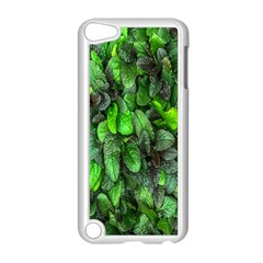The Leaves Plants Hwalyeob Nature Apple Ipod Touch 5 Case (white) by Nexatart