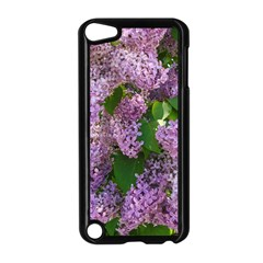 Lilacs 2 Apple Ipod Touch 5 Case (black) by dawnsiegler