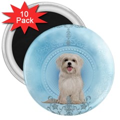 Cute Little Havanese Puppy 3  Magnets (10 Pack)  by FantasyWorld7