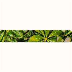 Top View Leaves Small Bar Mats by dflcprints