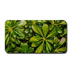 Top View Leaves Medium Bar Mats by dflcprints