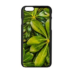 Top View Leaves Apple Iphone 6/6s Black Enamel Case by dflcprints