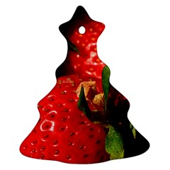 Red Strawberries Christmas Tree Ornament (two Sides) by snowwhitegirl