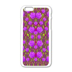 Roses Dancing On A Tulip Field Of Festive Colors Apple Iphone 6/6s White Enamel Case by pepitasart