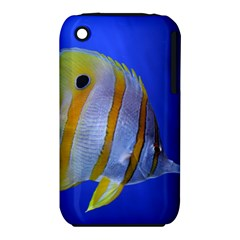 Butterfly Fish 1 Iphone 3s/3gs by trendistuff