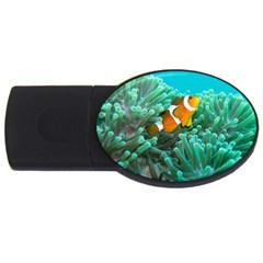 Clownfish 3 Usb Flash Drive Oval (4 Gb) by trendistuff