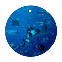Manta Ray 2 Ornament (round)