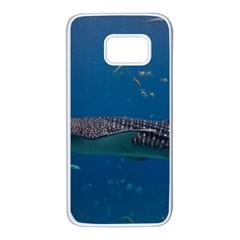 Whale Shark 1 Samsung Galaxy S7 White Seamless Case
