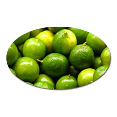 Limes 1 Oval Magnet