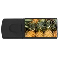 Pineapple 1 Rectangular Usb Flash Drive by trendistuff