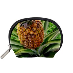 Pineapple 2 Accessory Pouches (small)  by trendistuff
