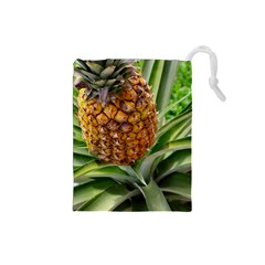 Pineapple 2 Drawstring Pouches (small)  by trendistuff