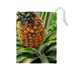 Pineapple 2 Drawstring Pouches (large)  by trendistuff