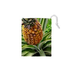 Pineapple 2 Drawstring Pouches (xs)  by trendistuff