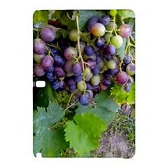 Grapes 2 Samsung Galaxy Tab Pro 12 2 Hardshell Case by trendistuff