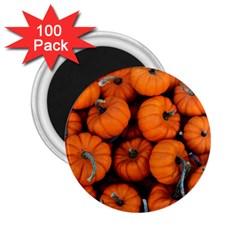 Pumpkins 2 2 25  Magnets (100 Pack)  by trendistuff