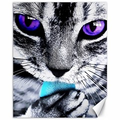Purple Eyes Cat Canvas 11  X 14   by augustinet