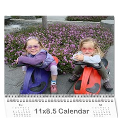 2009 Calander 1 By S Comiso   Wall Calendar 11  X 8 5  (12 Months)   Qwx0n2phogrf   Www Artscow Com Cover