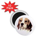 Beagle ^ 1.75  Magnet (10 pack)