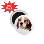 Beagle ^ 1.75  Magnet (100 pack)