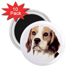 Beagle ^ 2.25  Magnet (10 pack)
