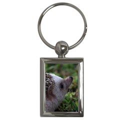 Standard Hedgehog Key Chain (Rectangle) from ArtsNow.com Front