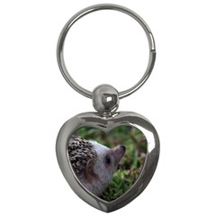 Standard Hedgehog Key Chain (Heart) from ArtsNow.com Front