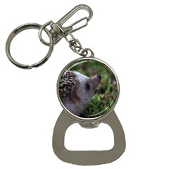 Standard Hedgehog Bottle Opener Key Chain from ArtsNow.com Front
