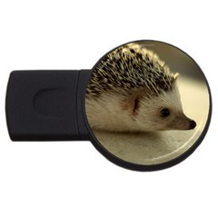 Standard Hedgehog II USB Flash Drive Round (1 GB) from ArtsNow.com Front