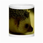 Standard Hedgehog II Night Luminous Mug from ArtsNow.com Center
