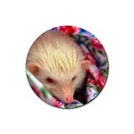 Albino HH Rubber Coaster (Round)