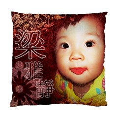 Cushion Case By Rebecca   Standard Cushion Case (two Sides)   T3wtdehjevjw   Www Artscow Com Front