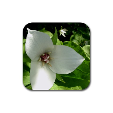 Trillium By Melissa   Rubber Coaster (square)   Uiel9n2zgo91   Www Artscow Com Front