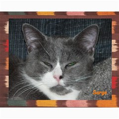 Kitty Pics #1 B By R K  Felton   Collage 8  X 10    Kxlqj2uxbza0   Www Artscow Com 10 x8 Print - 1