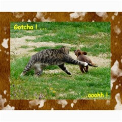 Kitty Pics #1 B By R K  Felton   Collage 8  X 10    Kxlqj2uxbza0   Www Artscow Com 10 x8 Print - 7