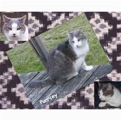Kitty Pics #1 B By R K  Felton   Collage 8  X 10    Kxlqj2uxbza0   Www Artscow Com 10 x8 Print - 9