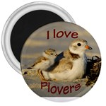Love Plovers - 3  Magnet