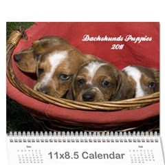 12 Month Puppies By Diana P   Wall Calendar 11  X 8 5  (12 Months)   0qd7ixw10gl1   Www Artscow Com Cover