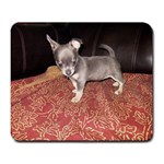 Chloe 11 weeks - Large Mousepad