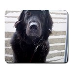 Snowy Dog - Collage Mousepad
